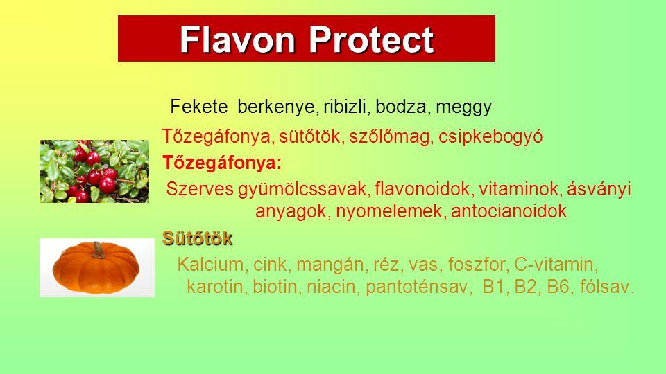 Flavon Protect Fekete berkenye, ribizli, bodza, meggy Tőzegáfonya, sütőtök, szőlőmag, csipkebogyó Tőzegáfonya: Szerves gyümölcssavak, flavonoidok, vit