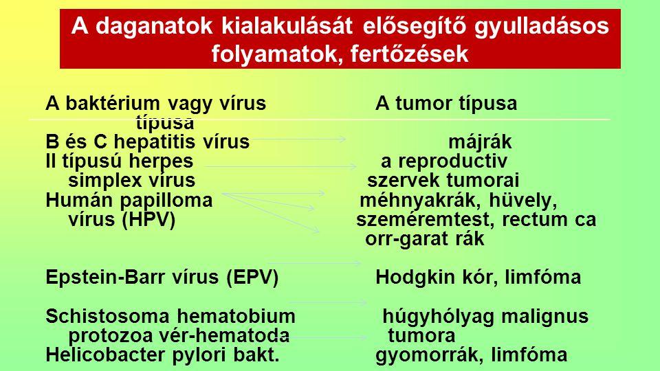 A daganatok kialakulását elősegítő gyulladásos folyamatok, fertőzések A baktérium vagy vírus A tumor típusa típusa B és C hepatitis vírus májrák II tí