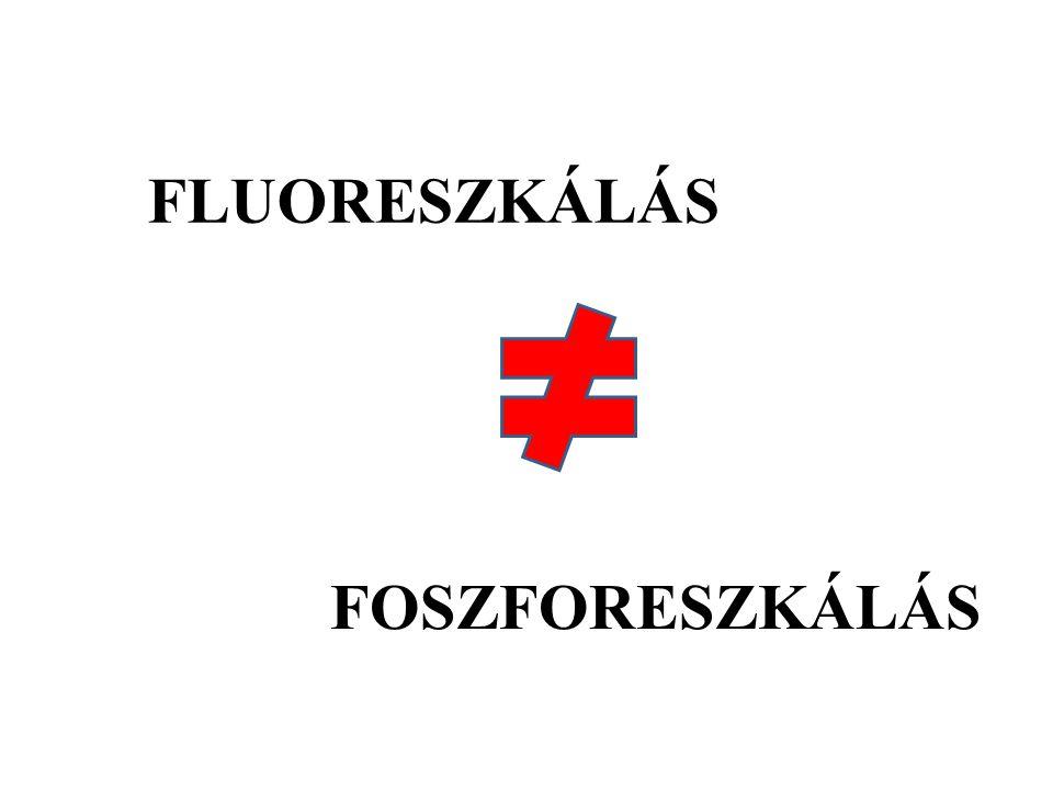 FLUORESZKÁLÁS FOSZFORESZKÁLÁS