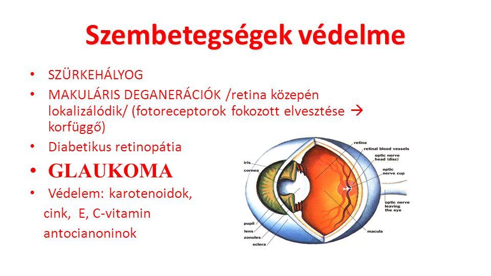 Szembetegségek védelme SZÜRKEHÁLYOG MAKULÁRIS DEGANERÁCIÓK /retina közepén lokalizálódik/ (fotoreceptorok fokozott elvesztése  korfüggő) Diabetikus r