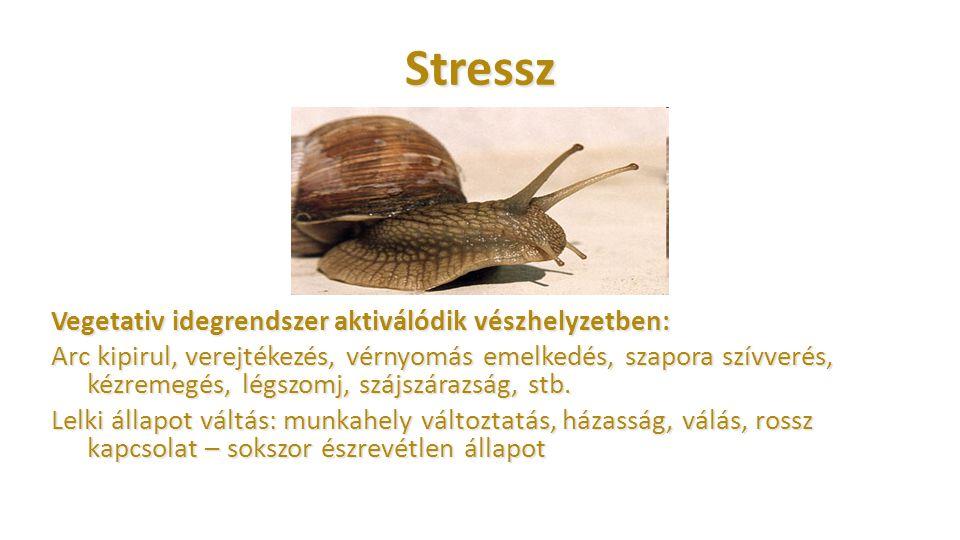 Stressz Vegetativ idegrendszer aktiválódik vészhelyzetben: Arc kipirul, verejtékezés, vérnyomás emelkedés, szapora szívverés, kézremegés, légszomj, sz