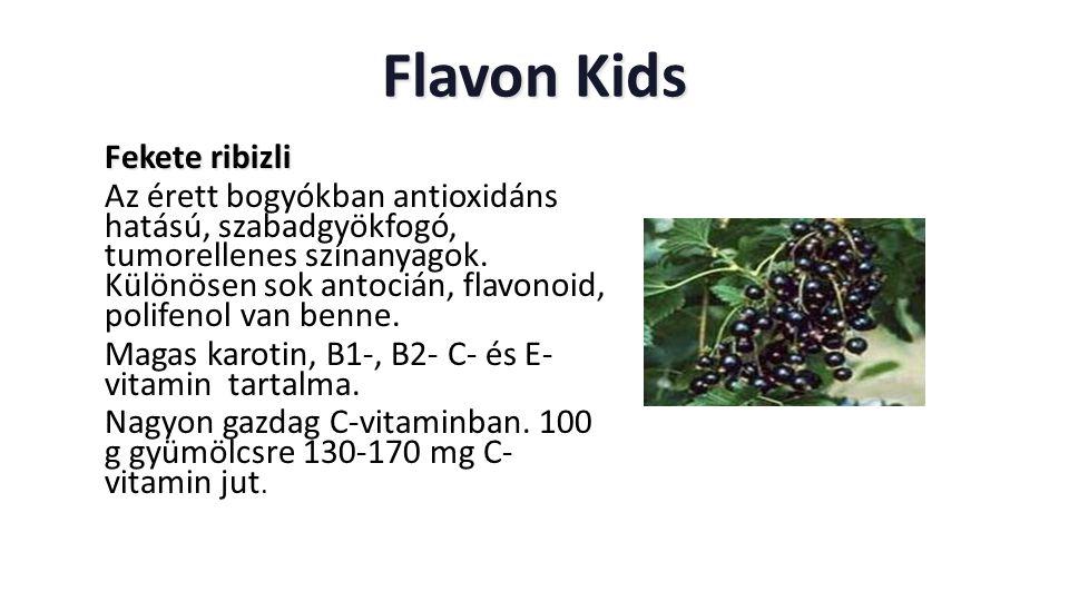 Flavon Kids Fekete ribizli Fekete ribizli Az érett bogyókban antioxidáns hatású, szabadgyökfogó, tumorellenes színanyagok. Különösen sok antocián, fla