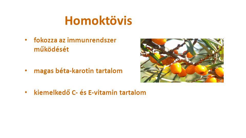 Homoktövis fokozza az immunrendszer működését magas béta-karotin tartalom kiemelkedő C- és E-vitamin tartalom