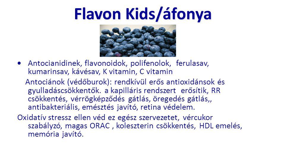 Flavon Kids/áfonya  Antocianidinek, flavonoidok, polifenolok, ferulasav, kumarinsav, kávésav, K vitamin, C vitamin Antociánok (védőburok): rendkívül