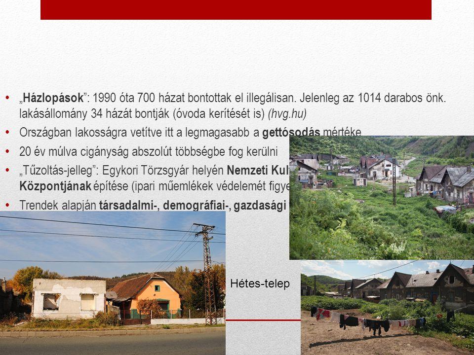 """"""" Házlopások """": 1990 óta 700 házat bontottak el illegálisan. Jelenleg az 1014 darabos önk. lakásállomány 34 házát bontják (óvoda kerítését is) (hvg.hu"""