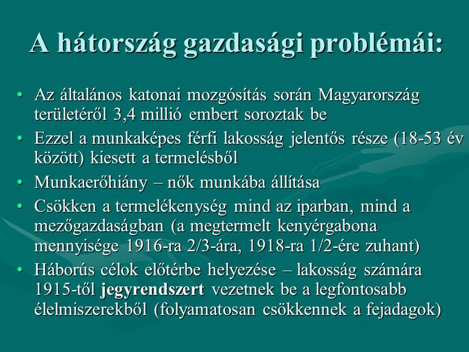 A hátország gazdasági problémái: Az általános katonai mozgósítás során Magyarország területéről 3,4 millió embert soroztak beAz általános katonai mozg