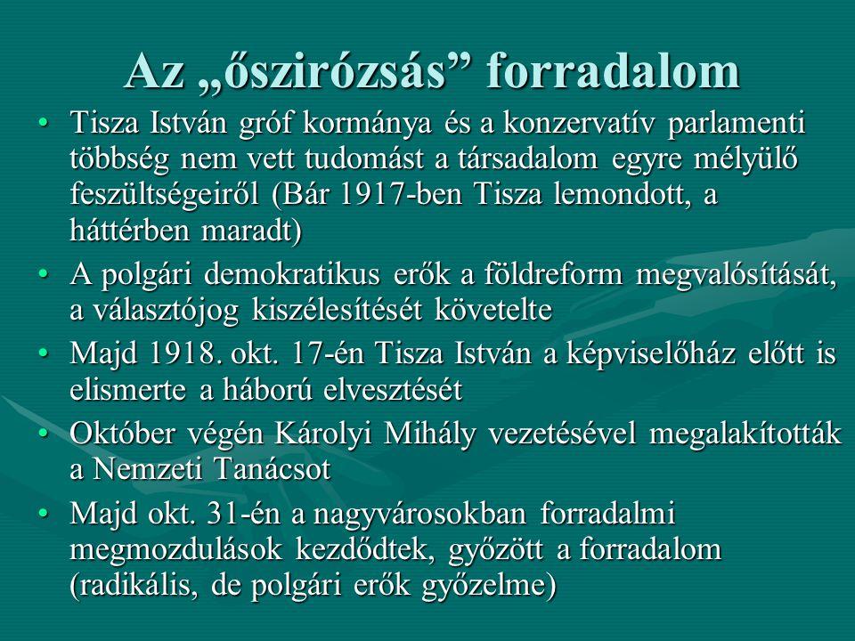 """Az """"őszirózsás"""" forradalom Tisza István gróf kormánya és a konzervatív parlamenti többség nem vett tudomást a társadalom egyre mélyülő feszültségeiről"""