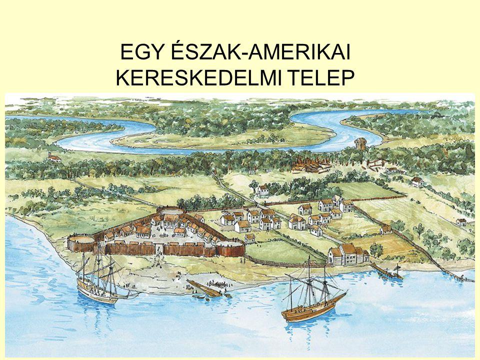 EGY ÉSZAK-AMERIKAI KERESKEDELMI TELEP