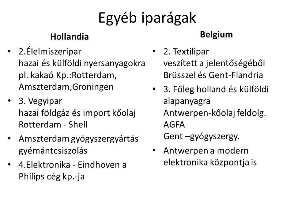 Egyéb iparágak Hollandia 2.Élelmiszeripar hazai és külföldi nyersanyagokra pl.
