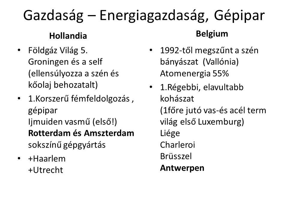 Gazdaság – Energiagazdaság, Gépipar Hollandia Földgáz Világ 5.