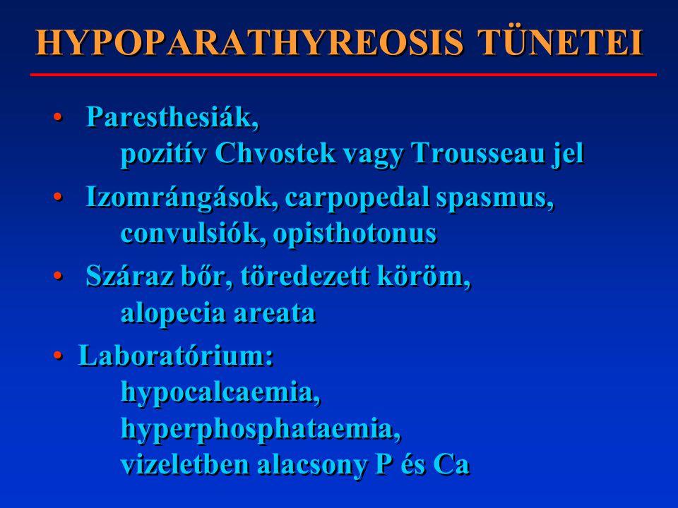 HYPOPARATHYREOSIS TÜNETEI Paresthesiák, pozitív Chvostek vagy Trousseau jel Izomrángások, carpopedal spasmus, convulsiók, opisthotonus Száraz bőr, töredezett köröm, alopecia areata Laboratórium: hypocalcaemia, hyperphosphataemia, vizeletben alacsony P és Ca Paresthesiák, pozitív Chvostek vagy Trousseau jel Izomrángások, carpopedal spasmus, convulsiók, opisthotonus Száraz bőr, töredezett köröm, alopecia areata Laboratórium: hypocalcaemia, hyperphosphataemia, vizeletben alacsony P és Ca