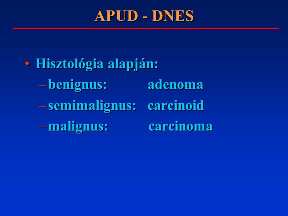 APUD - DNES Hisztológia alapján: –benignus: adenoma –semimalignus: carcinoid –malignus: carcinoma Hisztológia alapján: –benignus: adenoma –semimalignus: carcinoid –malignus: carcinoma