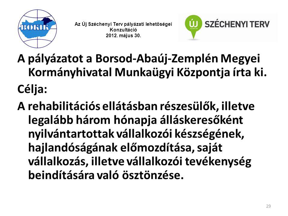 Az Új Széchenyi Terv pályázati lehetőségei Konzultáció 2012. május 30. A pályázatot a Borsod-Abaúj-Zemplén Megyei Kormányhivatal Munkaügyi Központja í