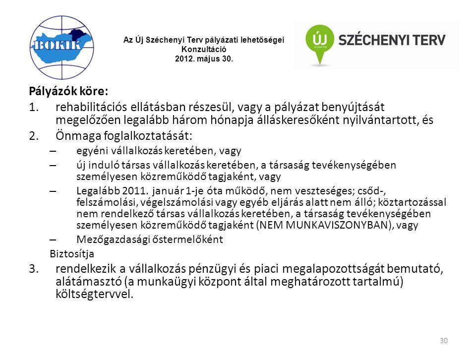 Az Új Széchenyi Terv pályázati lehetőségei Konzultáció 2012. május 30. Pályázók köre: 1.rehabilitációs ellátásban részesül, vagy a pályázat benyújtásá