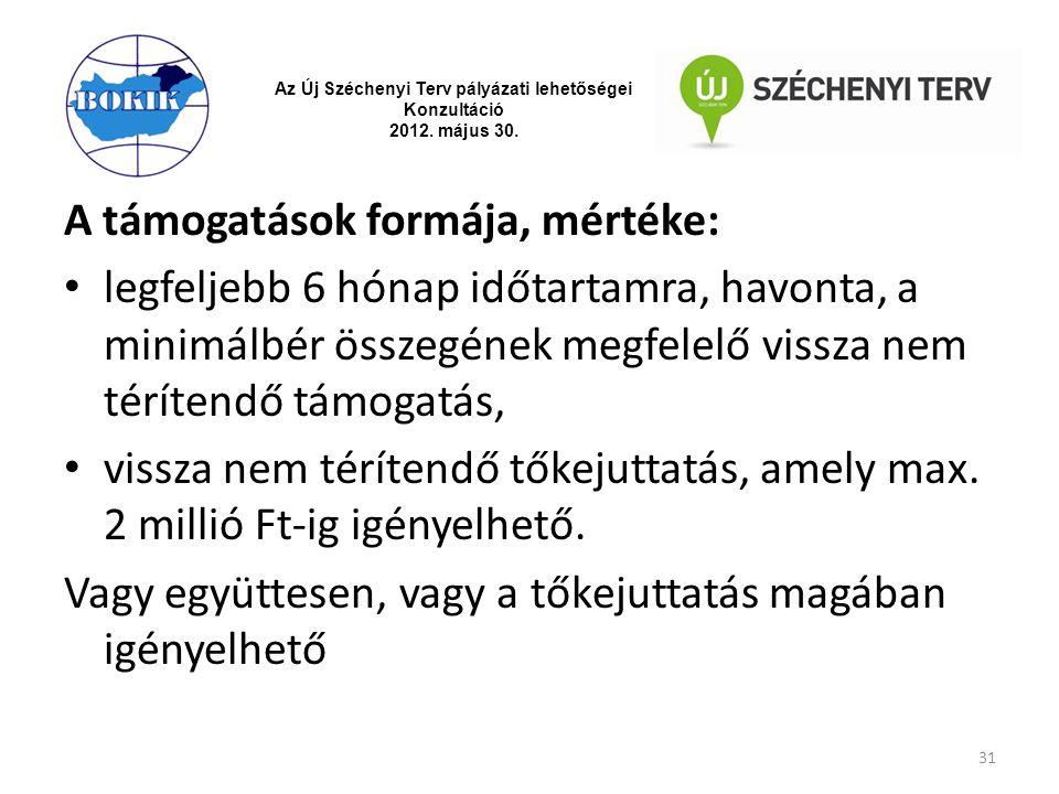 Az Új Széchenyi Terv pályázati lehetőségei Konzultáció 2012. május 30. A támogatások formája, mértéke: legfeljebb 6 hónap időtartamra, havonta, a mini