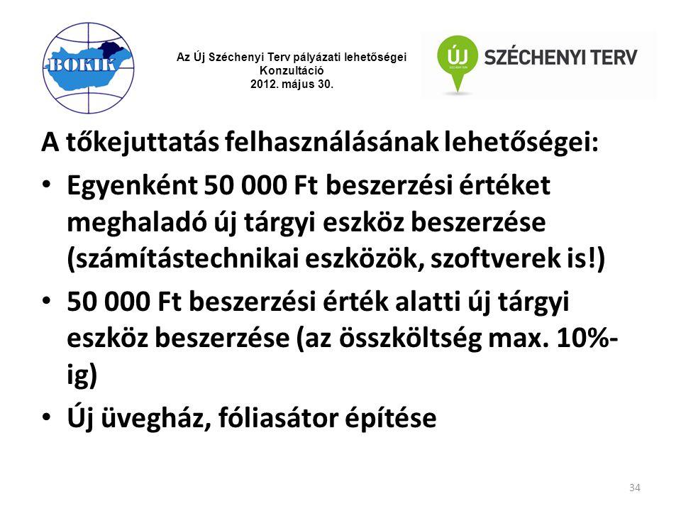 Az Új Széchenyi Terv pályázati lehetőségei Konzultáció 2012. május 30. A tőkejuttatás felhasználásának lehetőségei: Egyenként 50 000 Ft beszerzési ért