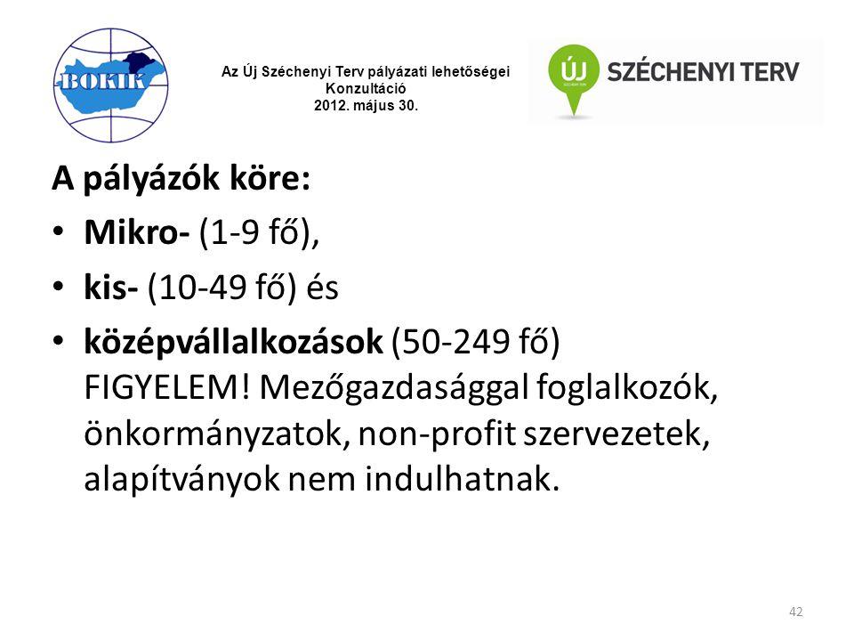 Az Új Széchenyi Terv pályázati lehetőségei Konzultáció 2012. május 30. A pályázók köre: Mikro- (1-9 fő), kis- (10-49 fő) és középvállalkozások (50-249