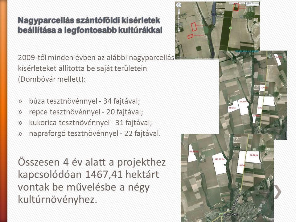 2009-től minden évben az alábbi nagyparcellás kísérleteket állította be saját területein (Dombóvár mellett): » búza tesztnövénnyel - 34 fajtával; » re