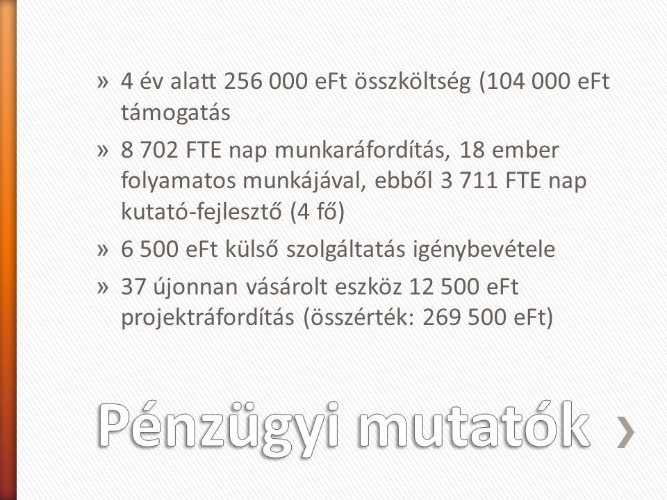 » 4 év alatt 256 000 eFt összköltség (104 000 eFt támogatás » 8 702 FTE nap munkaráfordítás, 18 ember folyamatos munkájával, ebből 3 711 FTE nap kutat