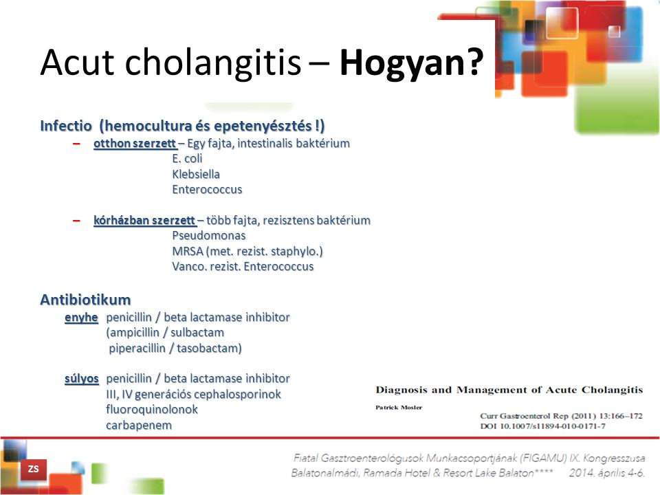 Acut cholangitis – Hogyan? Infectio (hemocultura és epetenyésztés !) – otthon szerzett – Egy fajta, intestinalis baktérium E. coli KlebsiellaEnterococ