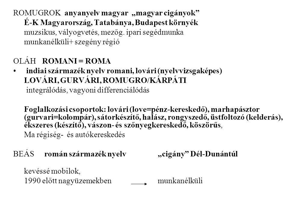 """ROMUGROK anyanyelv magyar """"magyar cigányok É-K Magyarország, Tatabánya, Budapest környék muzsikus, vályogvetés, mezőg."""