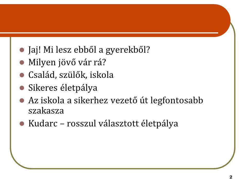 13 2014.február 14. A jelentkezési lapok továbbítása a középiskolákba Adatlapok – Győr 2014.