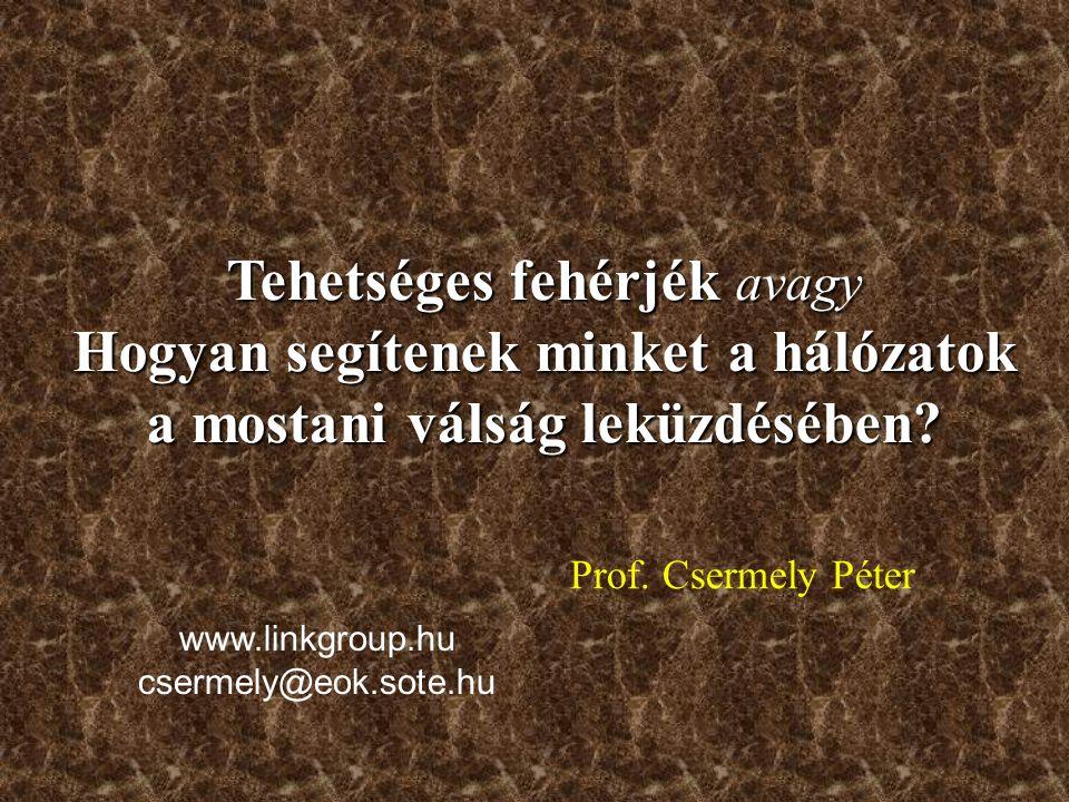 Prof. Csermely Péter Tehetséges fehérjék avagy Hogyan segítenek minket a hálózatok a mostani válság leküzdésében? www.linkgroup.hu csermely@eok.sote.h