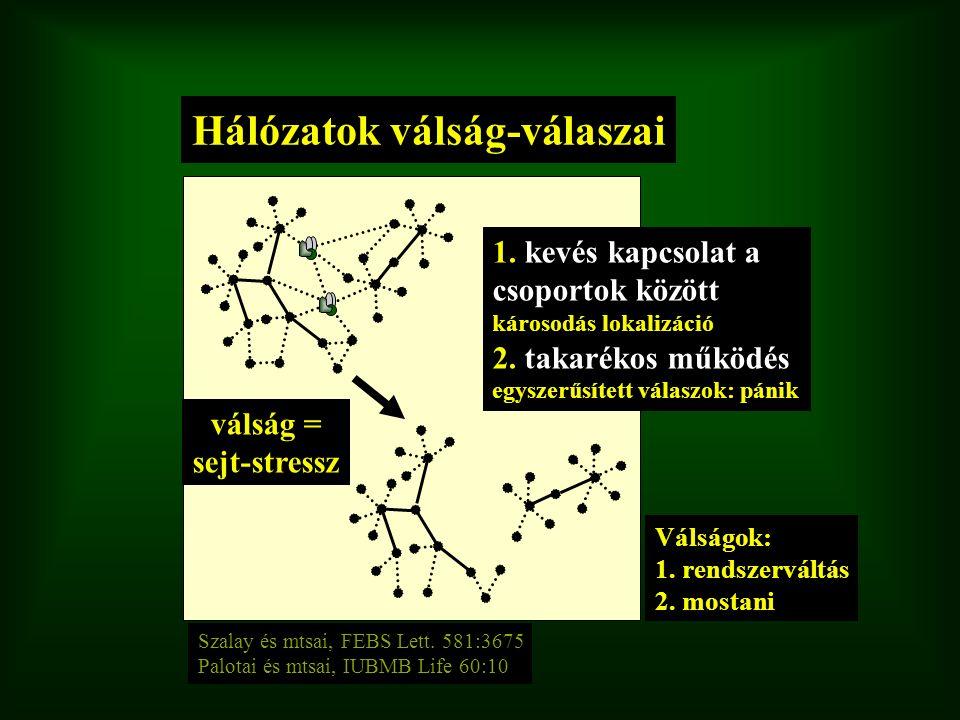 Hálózatok válság-válaszai Szalay és mtsai, FEBS Lett. 581:3675 Palotai és mtsai, IUBMB Life 60:10 válság = sejt-stressz 1. kevés kapcsolat a csoportok