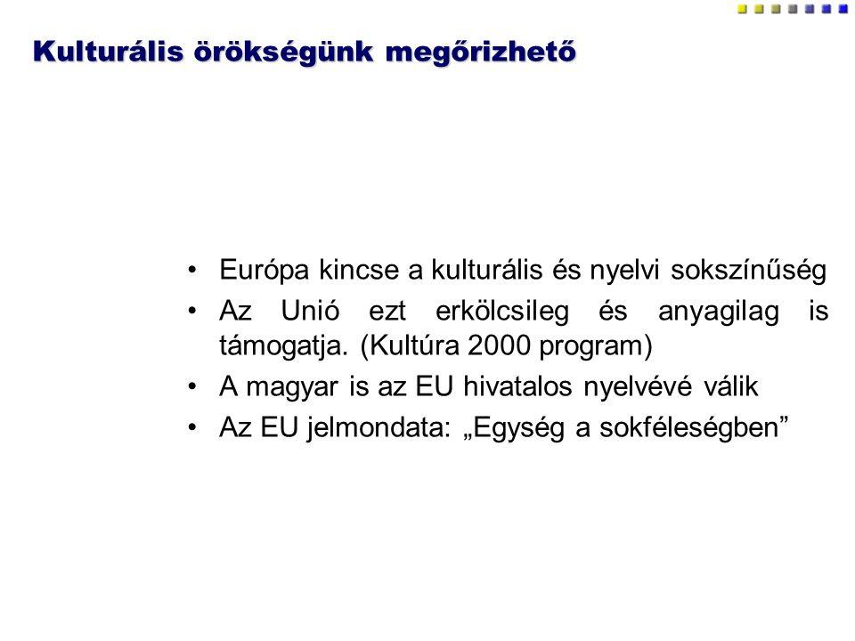 Kulturális örökségünk megőrizhető Európa kincse a kulturális és nyelvi sokszínűség Az Unió ezt erkölcsileg és anyagilag is támogatja. (Kultúra 2000 pr