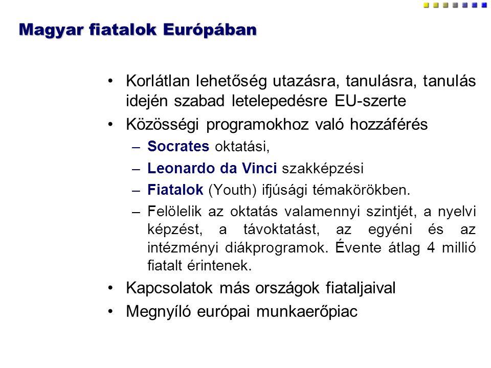 Magyar fiatalok Európában Korlátlan lehetőség utazásra, tanulásra, tanulás idején szabad letelepedésre EU-szerte Közösségi programokhoz való hozzáférés –Socrates oktatási, –Leonardo da Vinci szakképzési –Fiatalok (Youth) ifjúsági témakörökben.