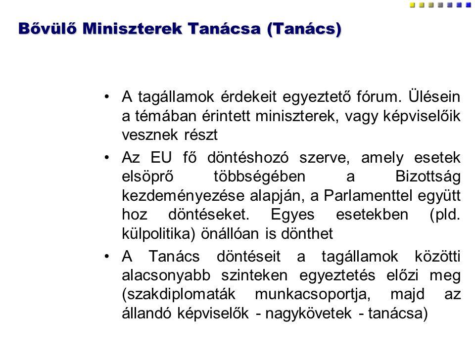 Bővülő Miniszterek Tanácsa (Tanács) A tagállamok érdekeit egyeztető fórum. Ülésein a témában érintett miniszterek, vagy képviselőik vesznek részt Az E