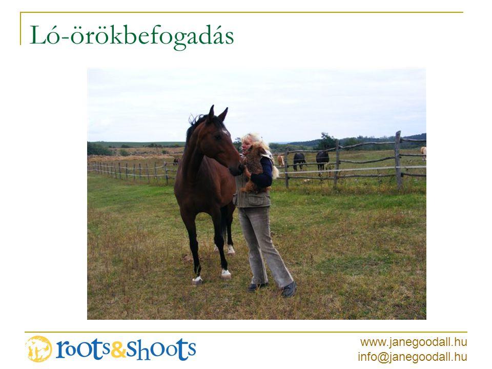 www.janegoodall.hu info@janegoodall.hu Ló-örökbefogadás