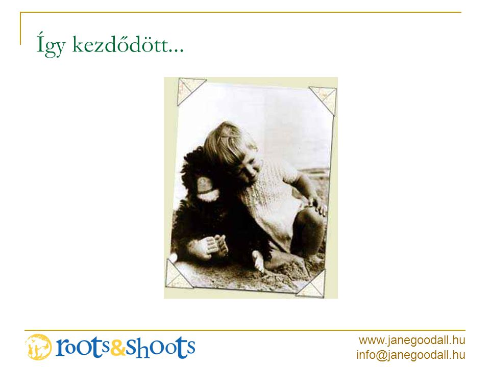 www.janegoodall.hu info@janegoodall.hu Így kezdődött...