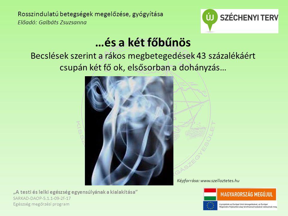 """…és a két főbűnös Becslések szerint a rákos megbetegedések 43 százalékáért csupán két fő ok, elsősorban a dohányzás… """"A testi és lelki egészség egyensúlyának a kialakítása SARKAD-DAOP-5.1.1-09-2f-17 Egészség megőrzési program Rosszindulatú betegségek megelőzése, gyógyítása Előadó: Galbáts Zsuzsanna Képforrása: www.szelloztetes.hu"""