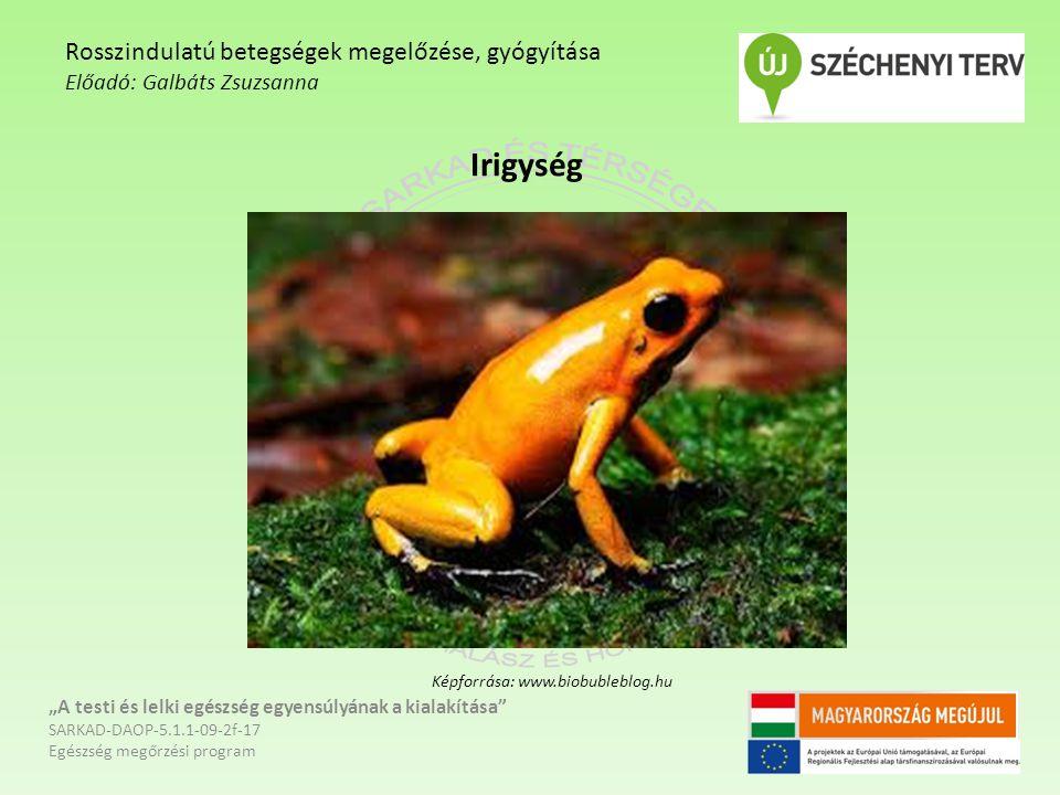 """Irigység """"A testi és lelki egészség egyensúlyának a kialakítása SARKAD-DAOP-5.1.1-09-2f-17 Egészség megőrzési program Rosszindulatú betegségek megelőzése, gyógyítása Előadó: Galbáts Zsuzsanna Képforrása: www.biobubleblog.hu"""