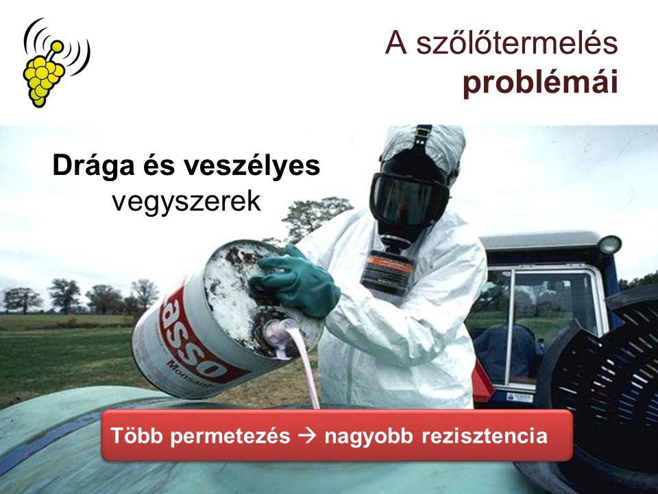 A szőlőtermelés problémái Drága és veszélyes vegyszerek Több permetezés  nagyobb rezisztencia
