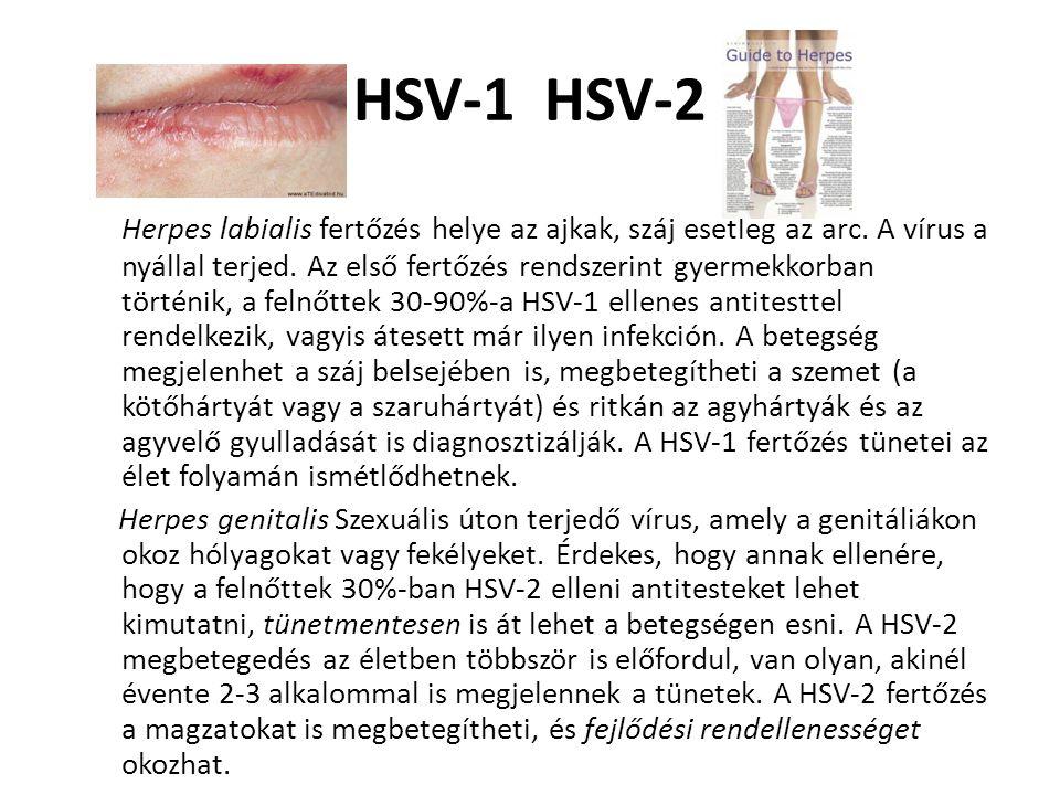 HSV-1 HSV-2 Herpes labialis fertőzés helye az ajkak, száj esetleg az arc. A vírus a nyállal terjed. Az első fertőzés rendszerint gyermekkorban történi