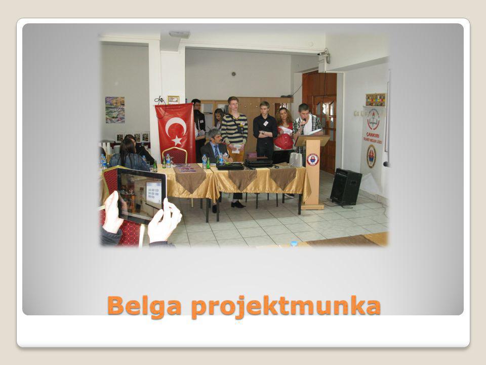 Belga projektmunka