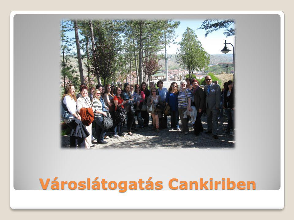 Városlátogatás Cankiriben