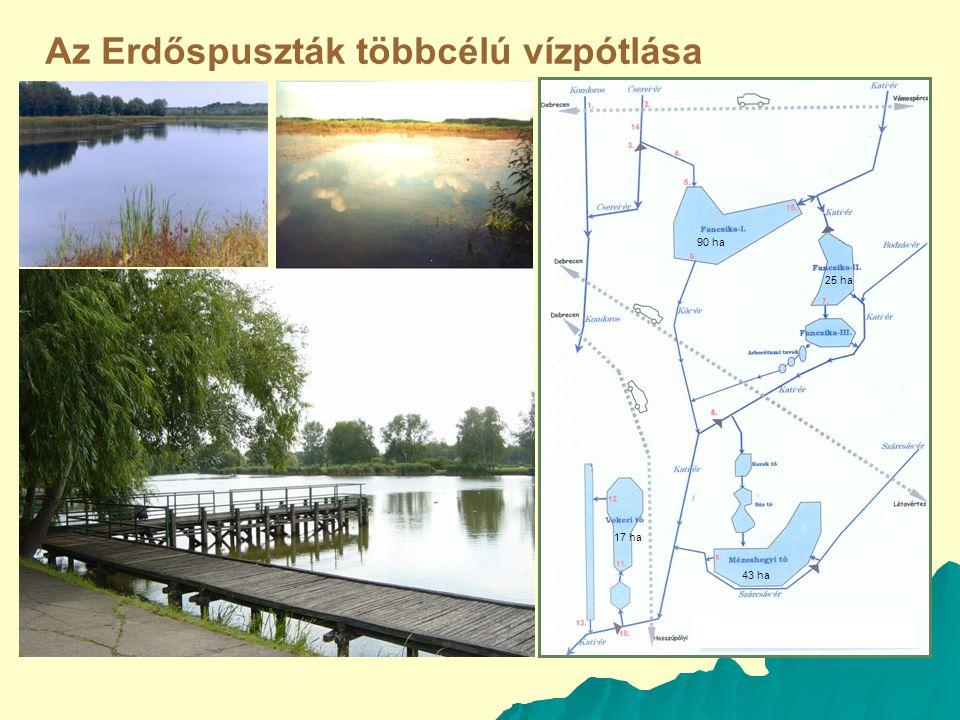 Az Erdőspuszták többcélú vízpótlása 90 ha 43 ha 25 ha 17 ha