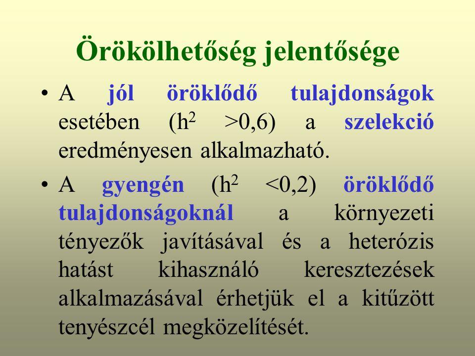 Örökölhetőség jelentősége A jól öröklődő tulajdonságok esetében (h 2 >0,6) a szelekció eredményesen alkalmazható.