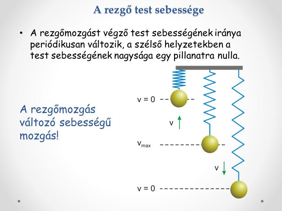 A rezgő test sebessége A rezgőmozgást végző test sebességének iránya periódikusan változik, a szélső helyzetekben a test sebességének nagysága egy pillanatra nulla.
