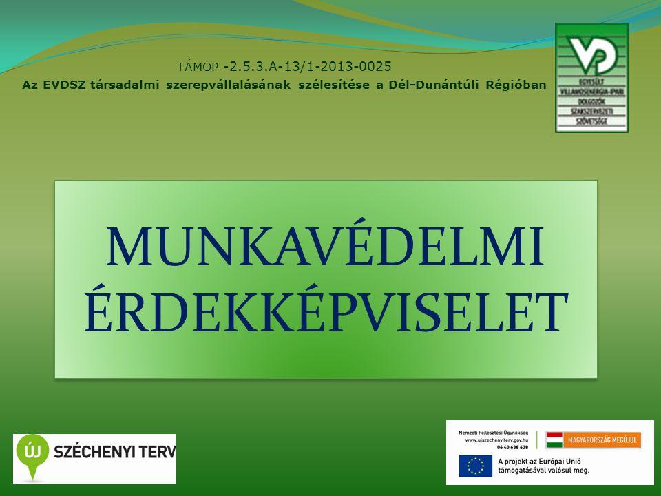 TÁMOP -2.5.3.A-13/1-2013-0025 Az EVDSZ társadalmi szerepvállalásának szélesítése a Dél-Dunántúli Régióban 1 MUNKAVÉDELMI ÉRDEKKÉPVISELET