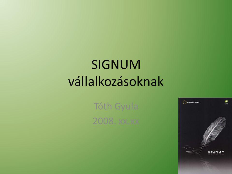 SIGNUM vállalkozásoknak Tóth Gyula 2008. xx.xx