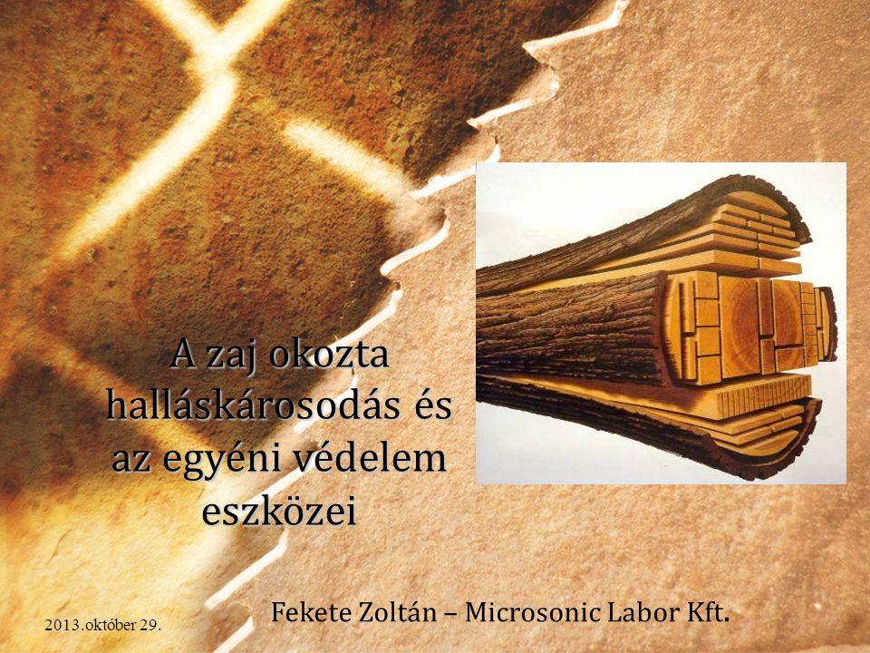 2013.október 29. A zaj okozta halláskárosodás és az egyéni védelem eszközei Fekete Zoltán – Microsonic Labor Kft.