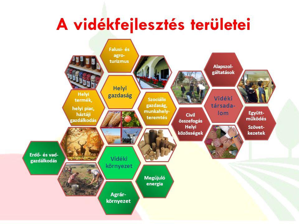 A vidékfejlesztés területei Megújuló energia Helyi termék, helyi piac, háztáji gazdálkodás Falusi- és agro- turizmus Helyi gazdaság Szociális gazdaság