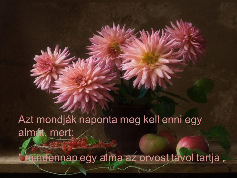 """Azt mondják naponta meg kell enni egy almát, mert: mindennap egy alma az orvost távol tartja """""""