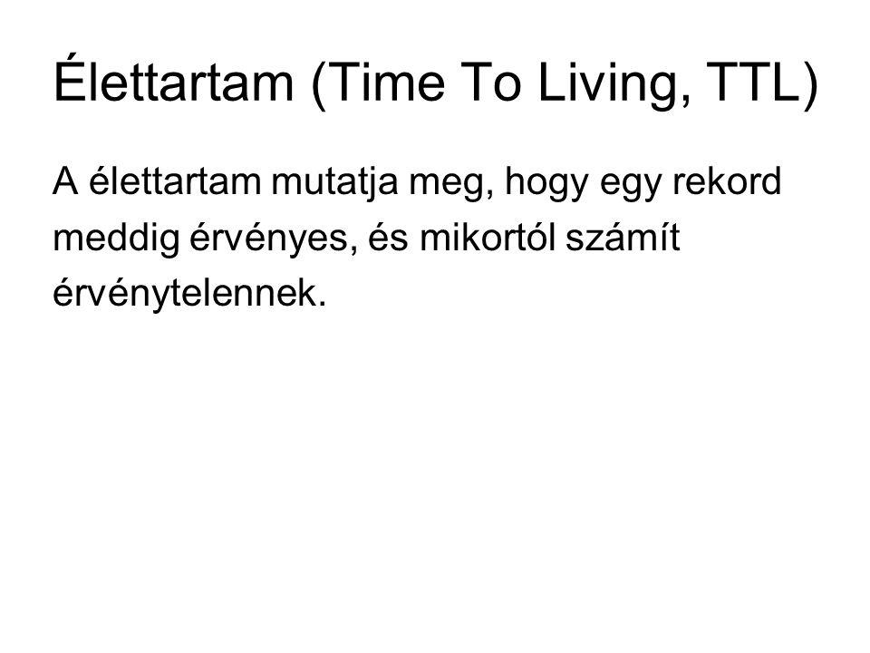 Élettartam (Time To Living, TTL) A élettartam mutatja meg, hogy egy rekord meddig érvényes, és mikortól számít érvénytelennek.