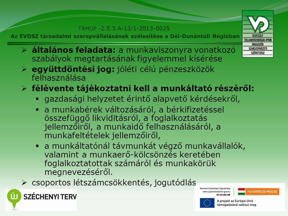 12  általános feladata: a munkaviszonyra vonatkozó szabályok megtartásának figyelemmel kísérése  együttdöntési jog: jóléti célú pénzeszközök felhasz