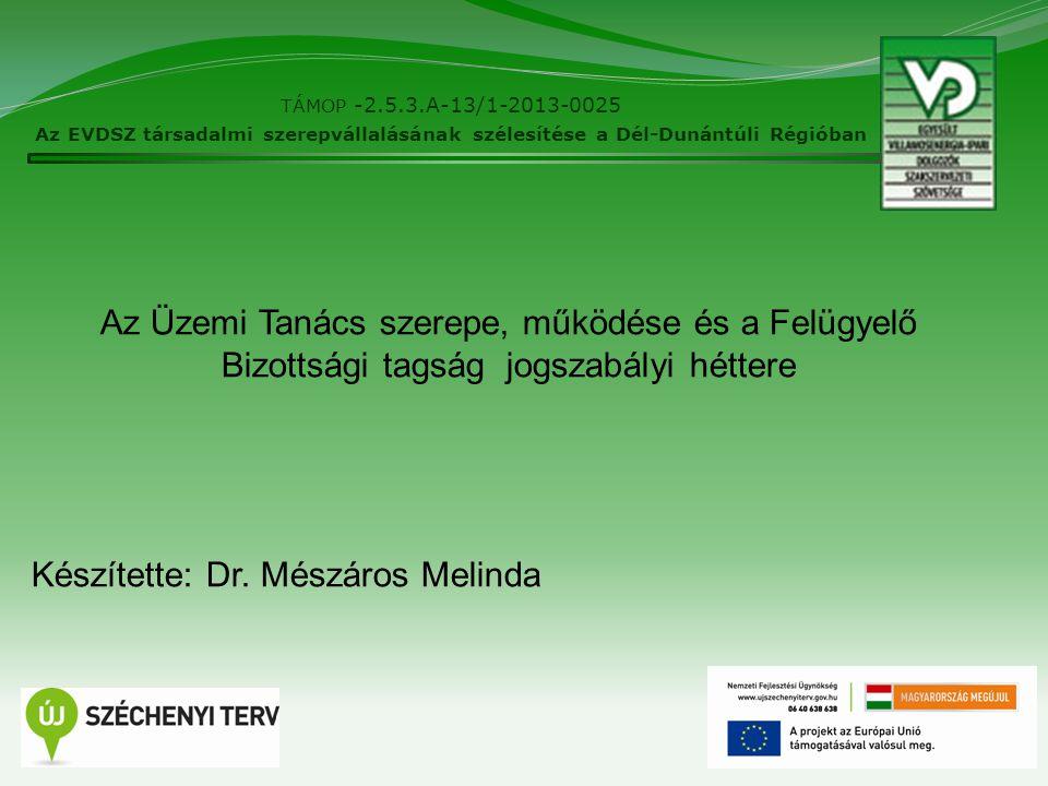 2 TÁMOP -2.5.3.A-13/1-2013-0025 Az EVDSZ társadalmi szerepvállalásának szélesítése a Dél-Dunántúli Régióban Az Üzemi Tanács szerepe, működése és a Fel